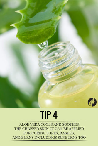 10 Mind Blowing Benefits of Aloe Vera Gel for Hair