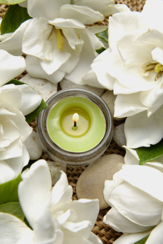 8 Helpful Plants for Sleep and Health Benefits