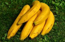 Impressive and Powerful Health Benefits of Bananas