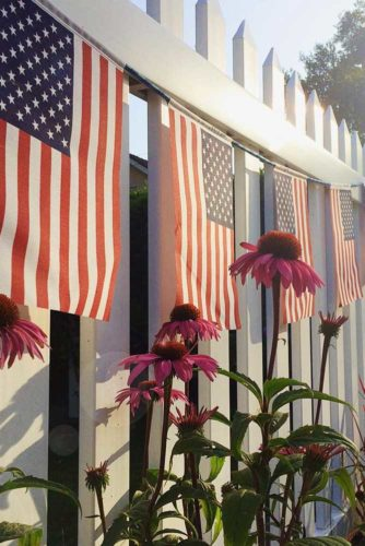 DIY 4th of July Decorations You Will Love picture 3