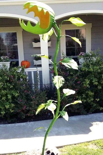 Fun and Scary Outdoor Halloween Decor picture 6