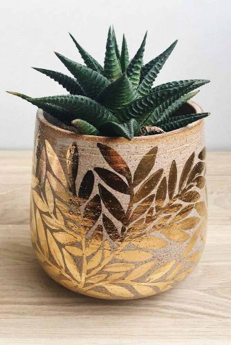 Small Plant In Patterned Pot #pot #plant