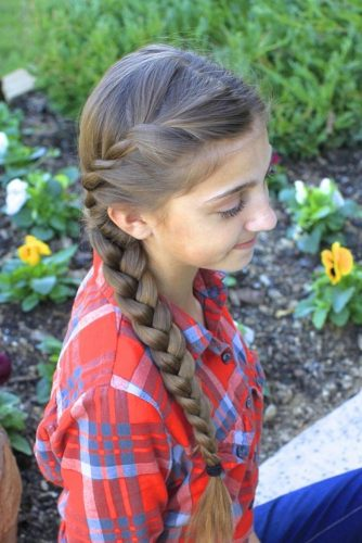 Twisted Side Braid picture4