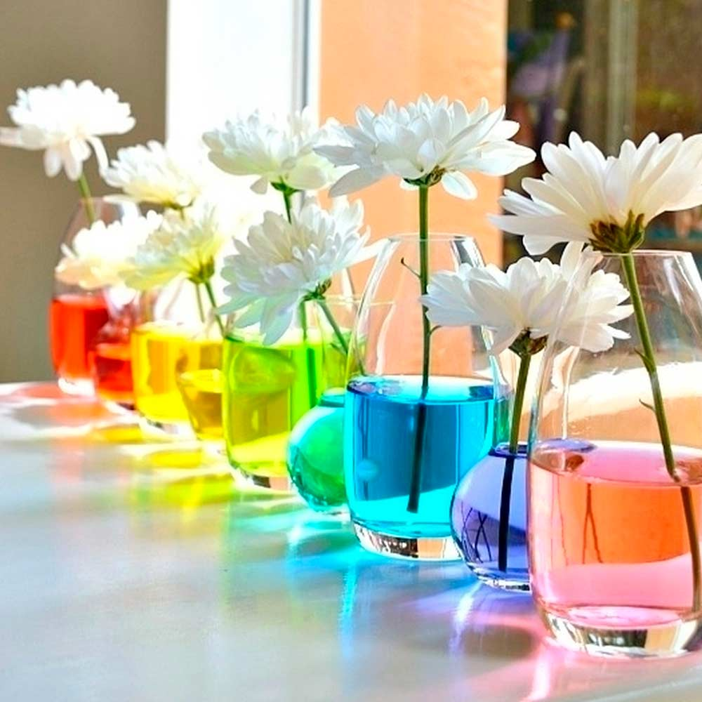 Easy Way To Catch A Rainbow #simpledecor #flowers