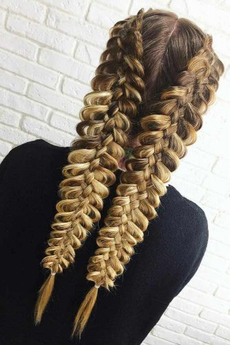 Double Braids In Hairstyles picture 3