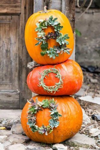 Greenery No Carving Pumpkin Decoration #greenerypumpkin #boo