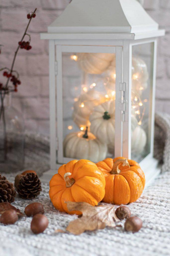 Fairy Thanksgiving Decor Idea with Lantern