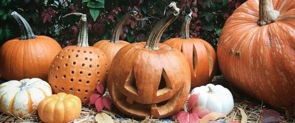18 Amazing Pumpkin Carving Ideas Your Should Try This Halloween