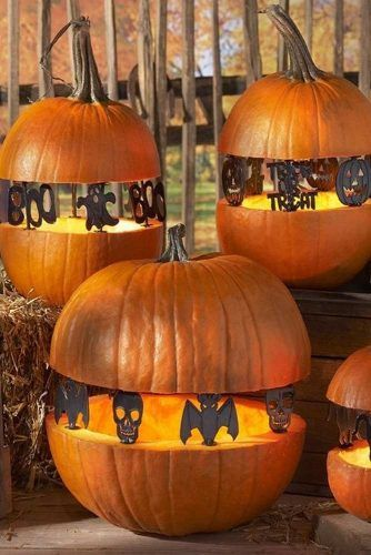 Spook-tacular Pumpkin Carving Idea #bats #skull