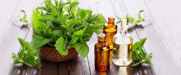 Amazing Benefits of Using Tea Tree Oil