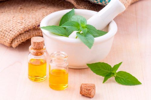 Amazing Benefits Of Using Tea Tree Oil