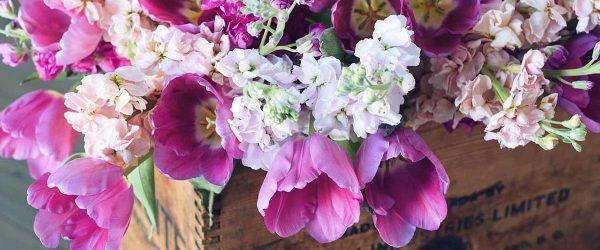 45+ Beautiful Spring Flowers Inspired By Pantone Season Colors