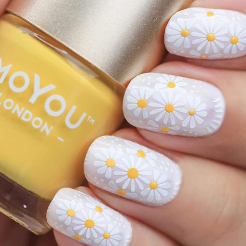 Fancy Daisies To Cheer Up Your Mood picture 1