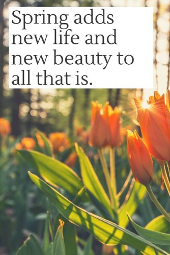 Spring adds new life and new beauty to all that is.