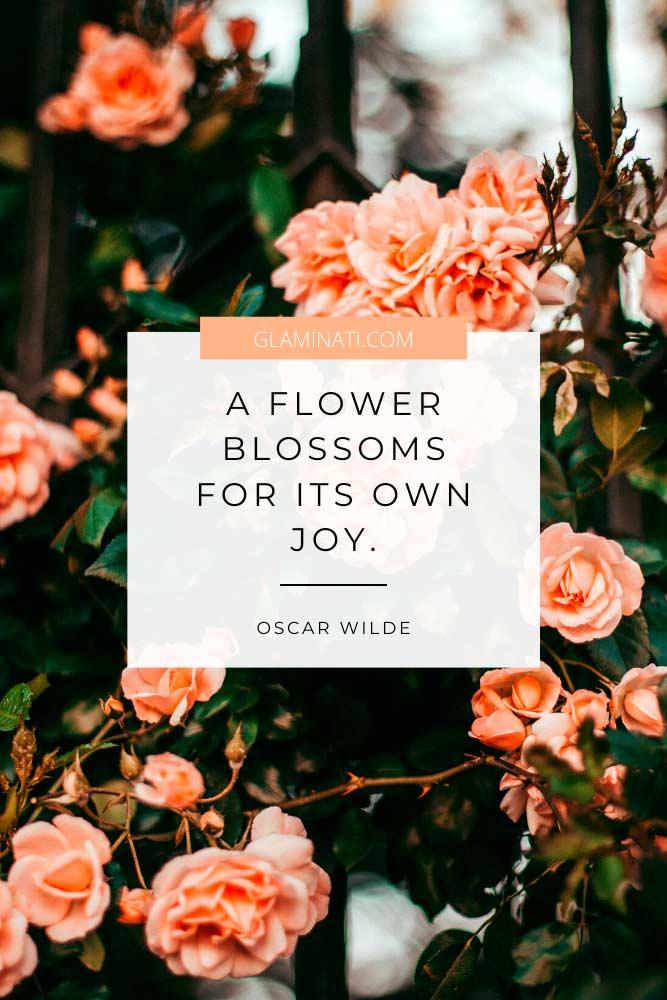Spring Quote By Oscar Wilde #oscarwilde #flowers