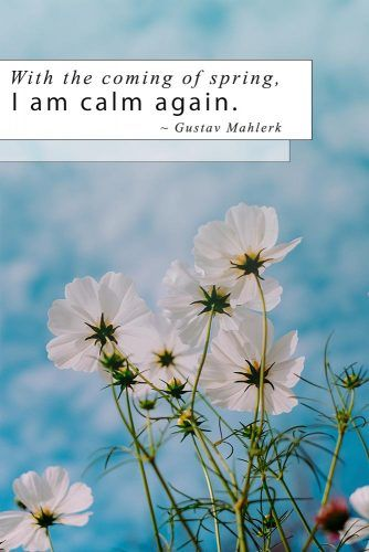 With The Coming Of Spring, I Am Calm Again #inspirationquotes #springmood