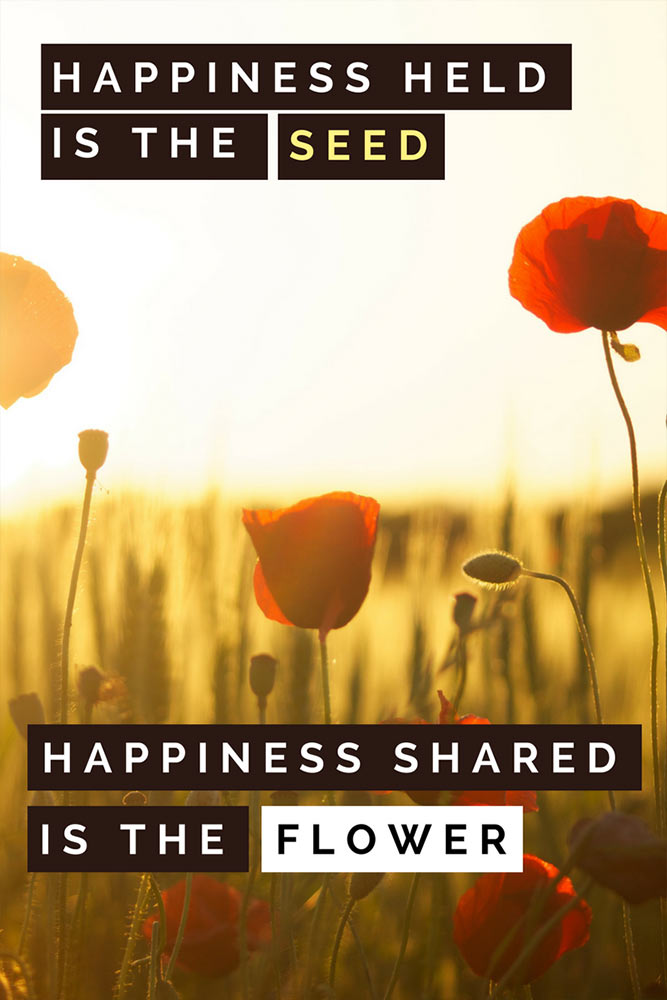 Happiness held is the seed, happiness shared is the flower.