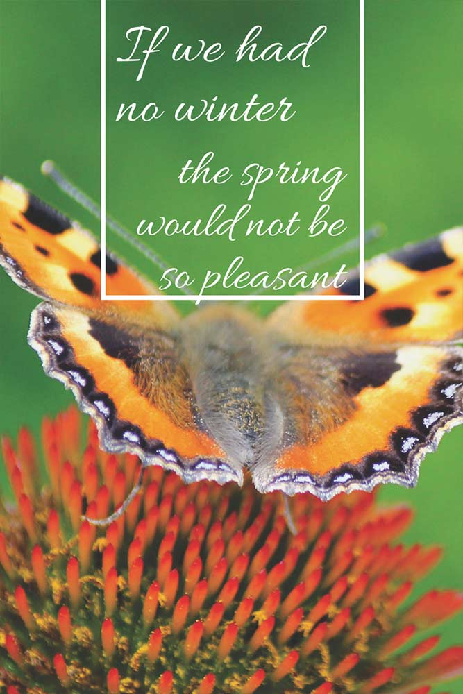 If we had no winter the spring would not be so pleasant.
