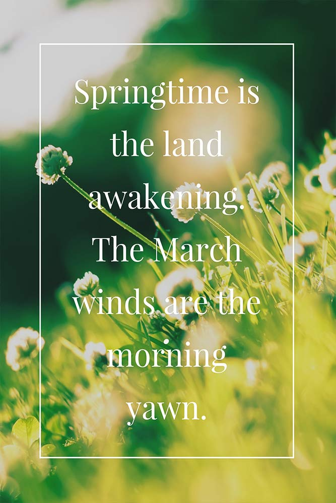 Springtime is the land awakening. The March winds are the morning yawn.