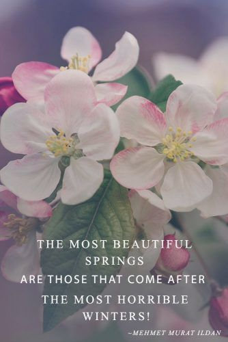 The Most Beautiful Springs #inspirationquotes #springmood