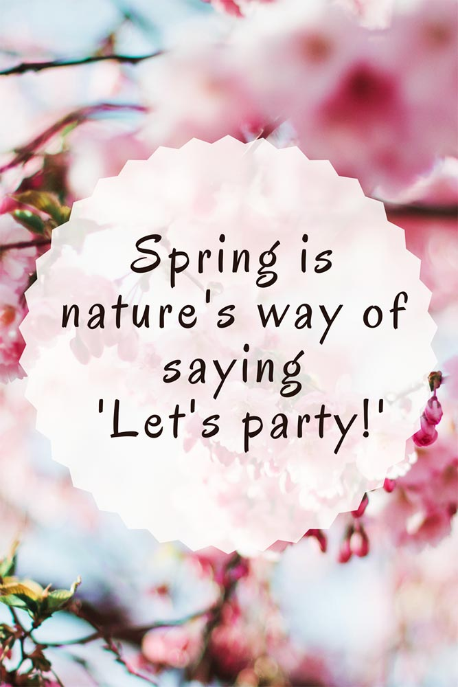 Spring is nature's way of saying 'Let's party!'.