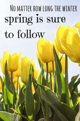 No matter how long is winter spring is sure to follow.