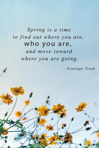Spring Is A Time To Find Out #inspirationquotes #springmood