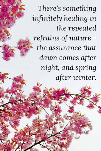 There's something infinitely healing in the repeated refrains of nature - the assurance that dawn comes after night, and spring after winter.