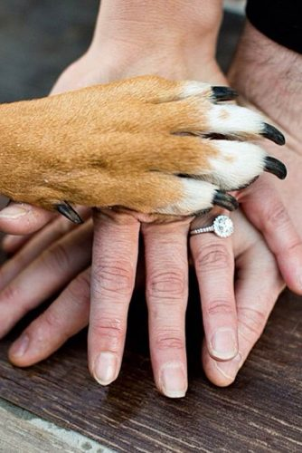 Cute Engagement Pictures With Pets picture 2