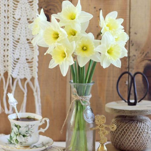 More Daffodils For A Spring Mood picture 6