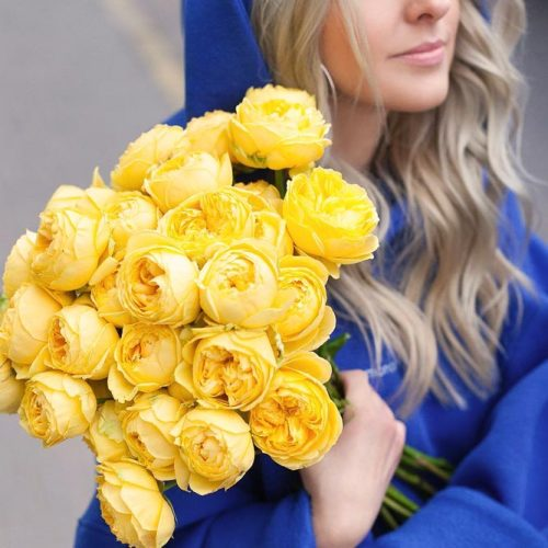 Gorgeous Rose Queen Of Flowers picture 2