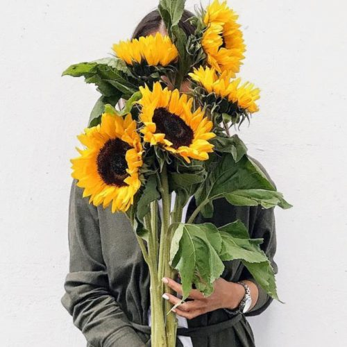Funny Sunflowers For A Nice Day: Fantastic Bouquet #sunflower #nature #sunflowerbouquet