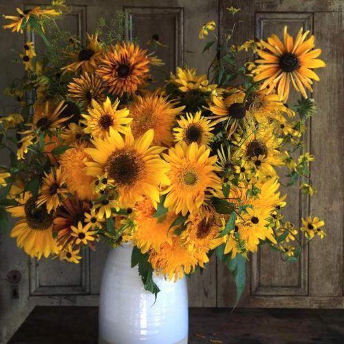 Funny Sunflowers For A Nice Day picture 1