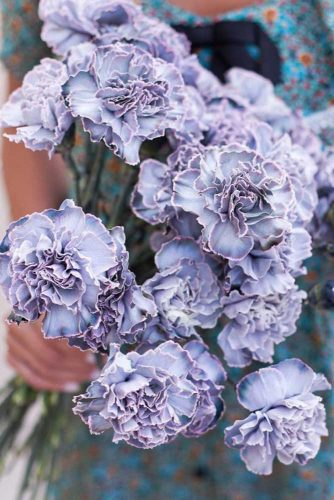 Marvelous Carnations #carnations #carnationsbouquet #purplecarnations #purpleflowers