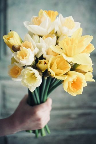 Daffodils Is Symbol Of Friendship