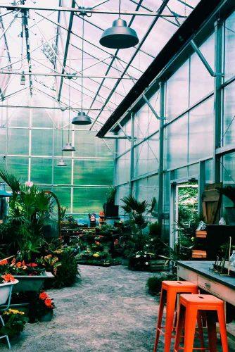 2. Visit Maypop Coffee and Garden Shop #gardenshop #coffee
