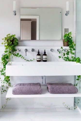 Humidity-Loving Plants: Some Green Accents #bathroompalnts