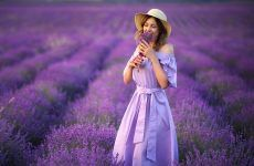 Ideas With A Lavender Color For Your Image And Life