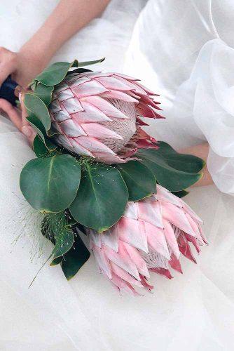 Amazing Protea Сynaroides #beautifulflowers #flowerspictures #ptrotea