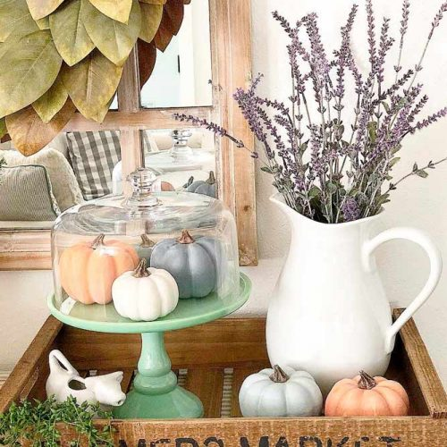 Display Fall Gourds Under Glass #prettyfalldecor #tinypumpkins