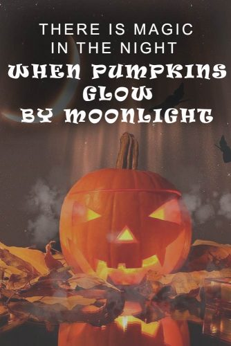 There is magic in the night when pumpkins glow by moonlight. #happyhalloween #funhalloweenquotes
