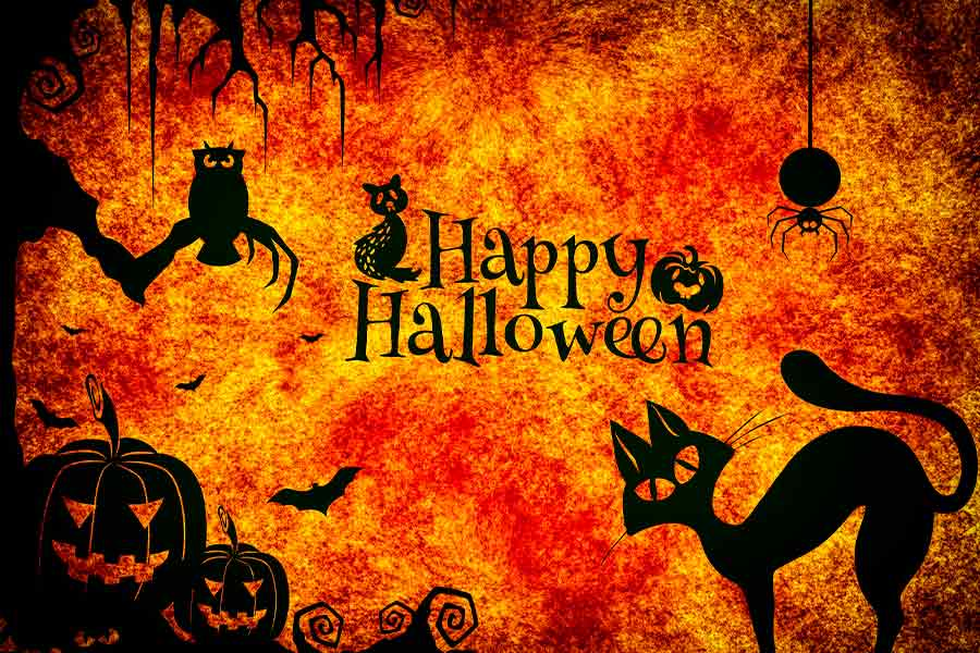 Happy Halloween Quotes That Ooze Holiday Vibes