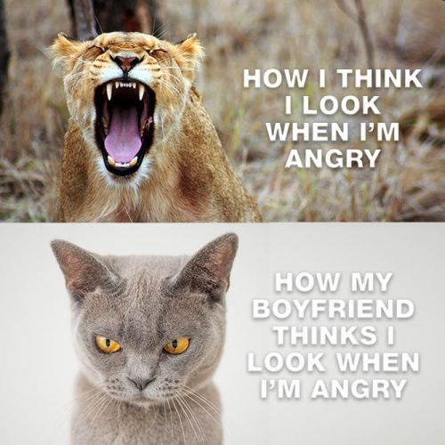 How I think i look when I'm angry. How my Boyfriend thinks I look when I'm angry. #lovememes #relationshipmemes #realtalksmeme