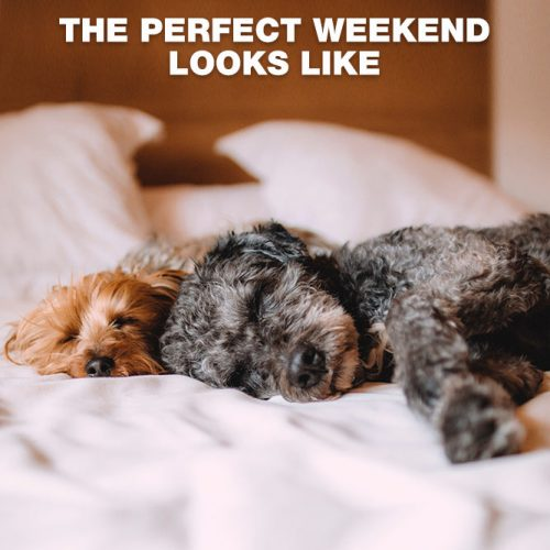 The Perfect weekend looks like that. #lovememes #relationshipmemes #realtalksmeme