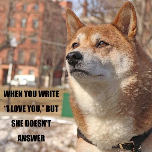 When you write I love you, but she does not answer #funnymemes #lovememes #funnypicture