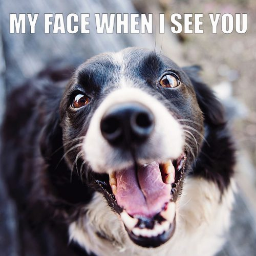 My face when I see you #funnymemes #lovememes #funnypicture