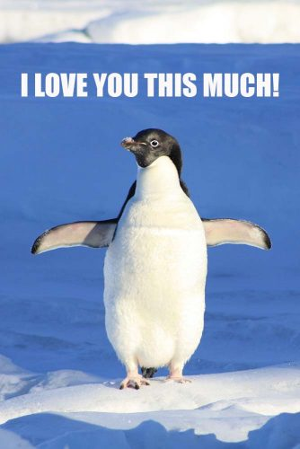 I love you this much #funnymemes #lovememes #funnypicture