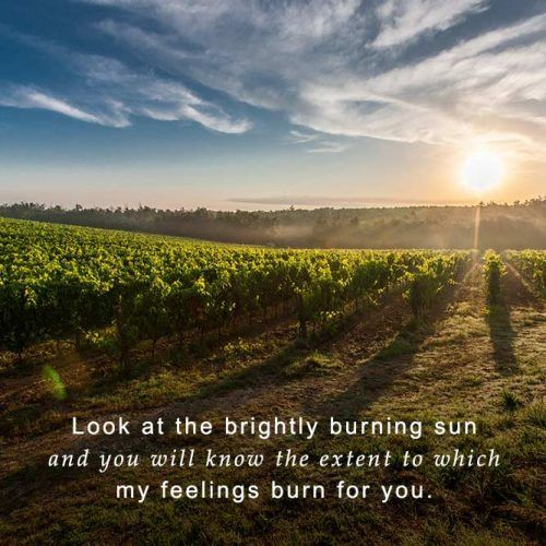 My Feeling Are Like Sun #insparation #insparationquotes