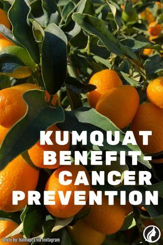 Cancer Prevention #cancerprevention