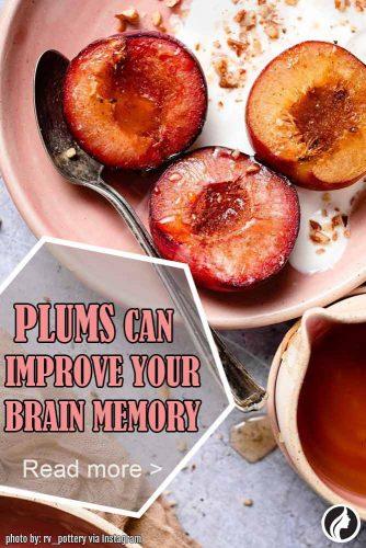 Can Improve Brain Memory #improvememory #plumforhealth